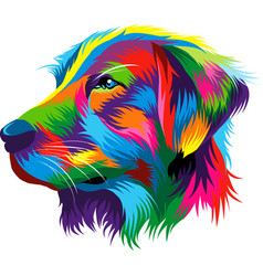 portrait of the head of a golden retriever from vector image