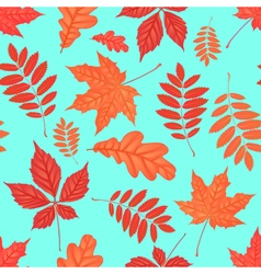 Seamless pattern with autumn parthenocissus oak vector image