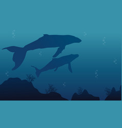 Silhouette of whale and reef landscape vector