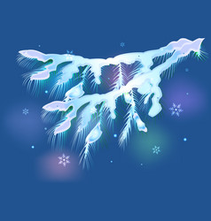 snowy fir branch for christmas eps10 vector image