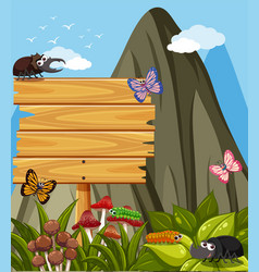 wooden sign and many insects in garden vector image