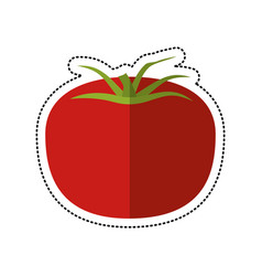 cartoon tomato vegetable healthy icon vector image