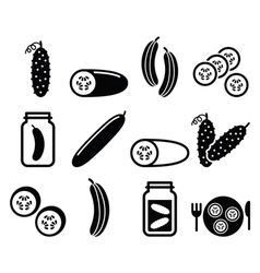 Cucumber pickled slices - food icons vector