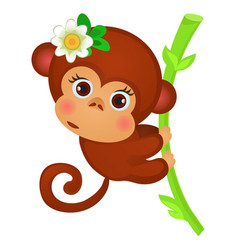 cute little monkey on a stalk bamboo isolated vector image