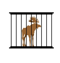 Deer in a cage Animal in Zoo behind bars Elk with vector