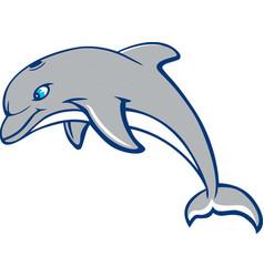 Dolphin logo mascot vector
