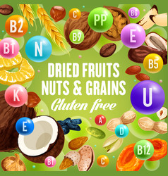 dried fruits nuts and grains gluten free food vector image