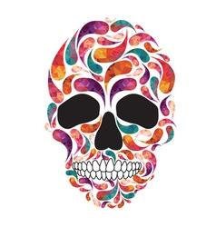 music fan skull vector image vector image