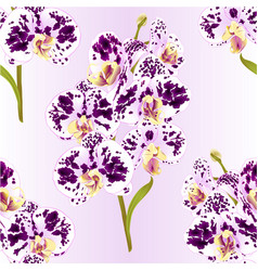 Seamless texture branch orchid spotted vector