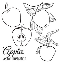 set of sketches and line doodles vector image