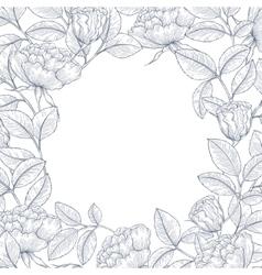 Decorative english garden rose vector image vector image