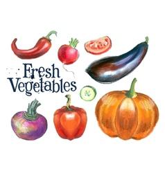 fresh vegetables logo design template vector image vector image