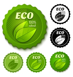 Eco banner retro vector
