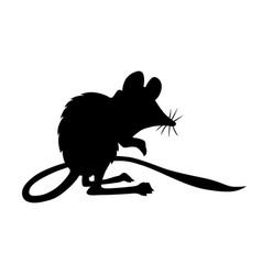 jerboa-marsupial vector image