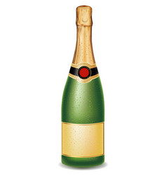 luxury champagne bottle with many drops vector image