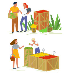 Marketplace with apples harvesting fruit vector