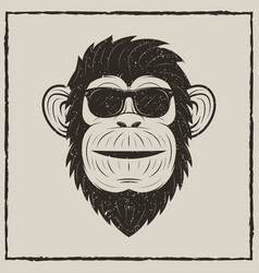 Monkey in sunglasses grunge t-shirt vector