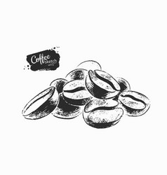 Pile coffee beans vector