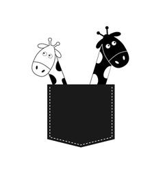 Cute cartoon black white giraffe in the pocket Boy vector image