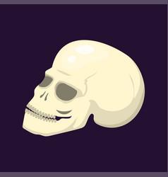 style skull face halloween horror style tattoo vector image