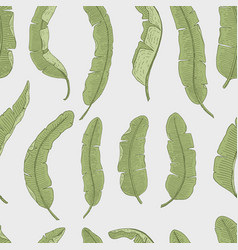 tropical or exotic leaves seamless pattern leaf vector image