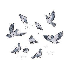 flock of urban wild pigeons pecks seeds vector image