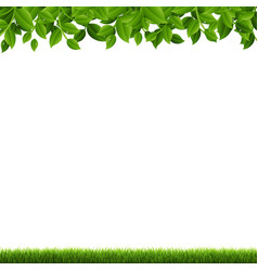 Green branches and grass vector