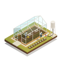 Greenhouse facility irrigation isometric vector