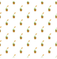 home flower pot pattern seamless vector image