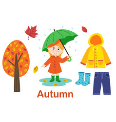 isolated autumn set with girl tree and clothes vector image