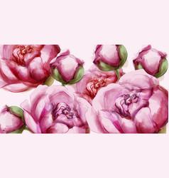 peony flowers delicate background wedding vector image