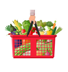 plastic shopping basket full of vegetables in hand vector image