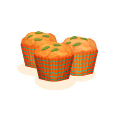 pumpkin muffins organic healthy autumn food vector image