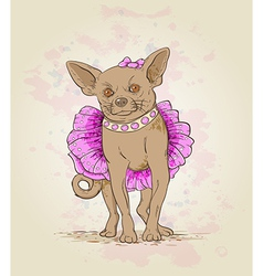 Small decorative dog in pink dress vector image