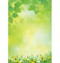 leaves flowers background vector image vector image