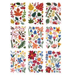 collection floral patterns set colorful spring vector image