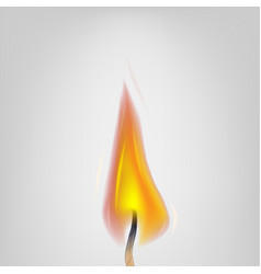 Realistic fire candles close-up detailed vector