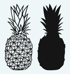 Ripe tasty pineapple vector image vector image