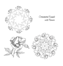 Set ornamental round with flowers vector image
