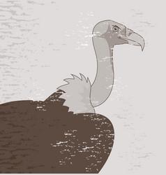 Vintage vulture vector