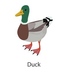 duck icon isometric style vector image