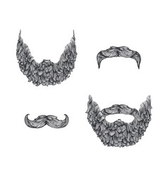 beard set vector image vector image