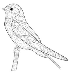Adult coloring bookpage a cute swallow on the vector