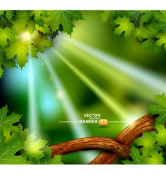 Background mystical vector