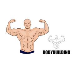 bodybuilder strong muscular man vector image