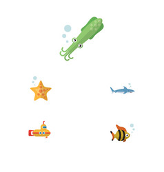 flat icon marine set of octopus sea star shark vector image