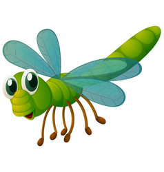 green dragonfly flying on white background vector image