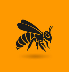 honey bee silhouette on orange background vector image