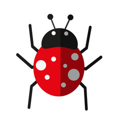 insect icon image vector image
