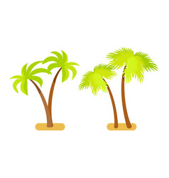 palm trees collection object vector image
